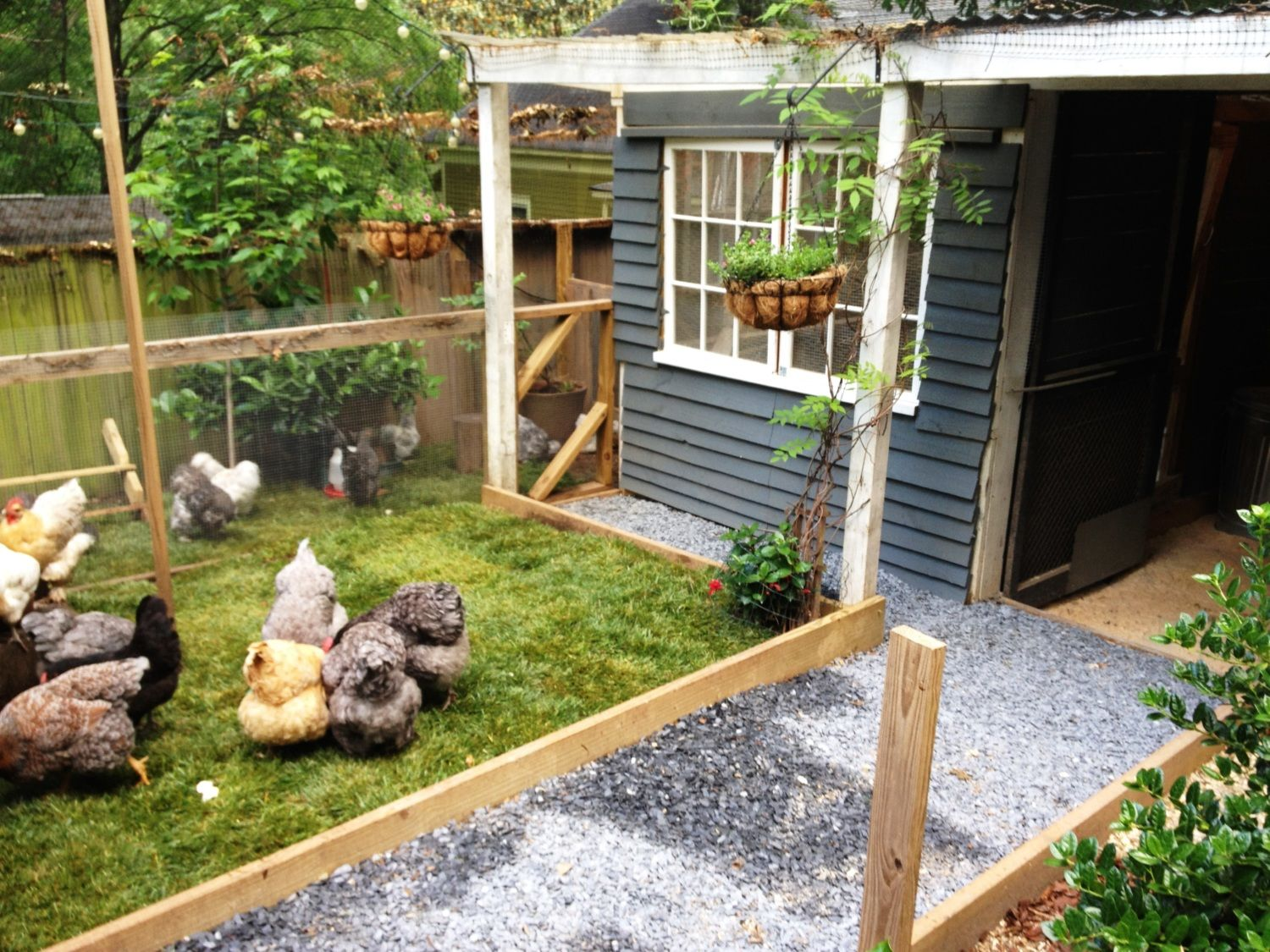 post your chicken coop pictures here page 59