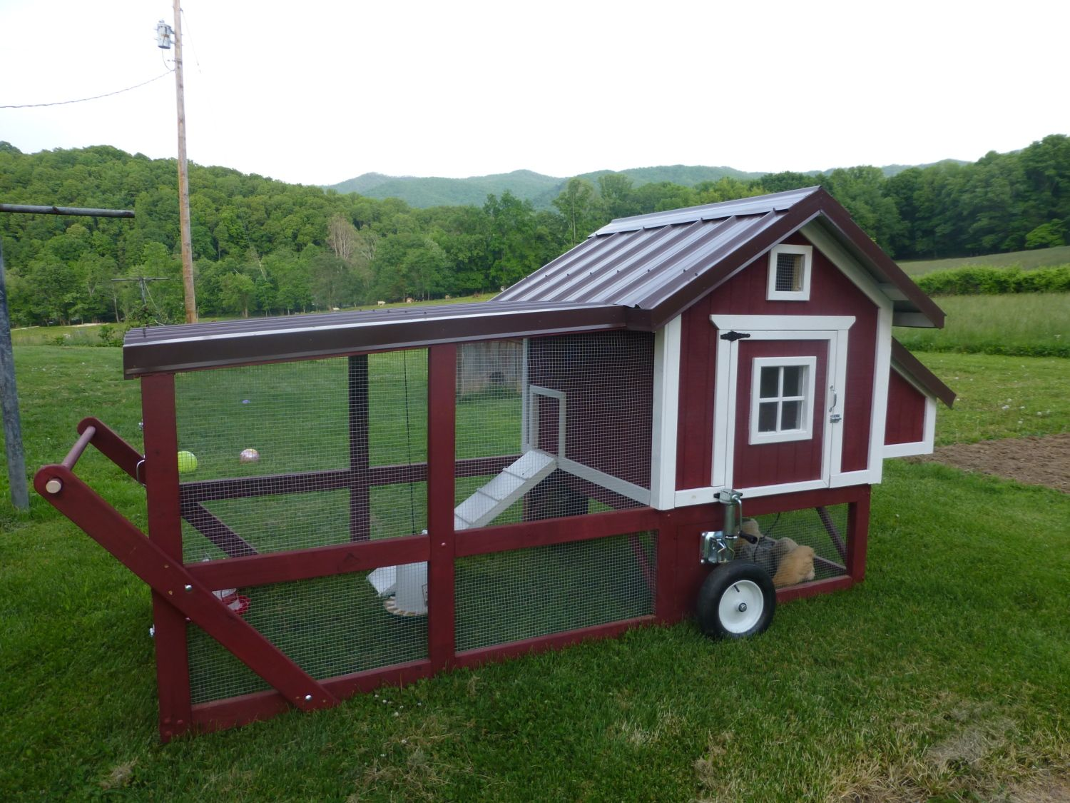 My new chicken tractor for Big chicken tractor