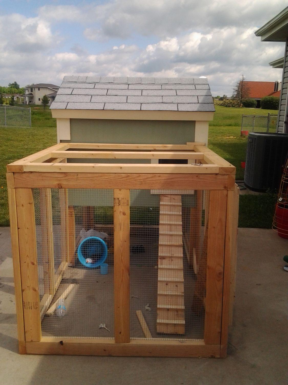 100 best backyard chicken coop inside our chicken coop