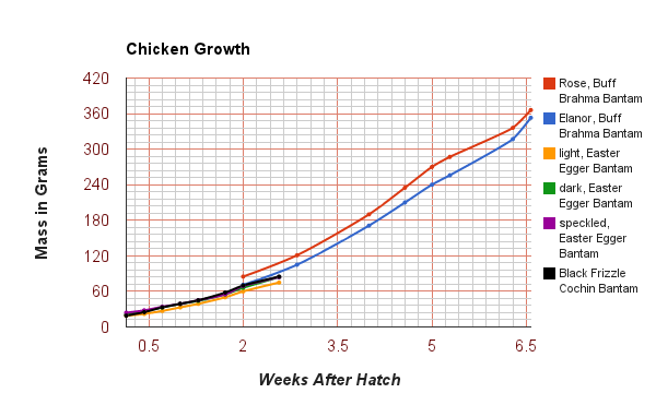 Growth Chart Page 2 Backyard Chickens