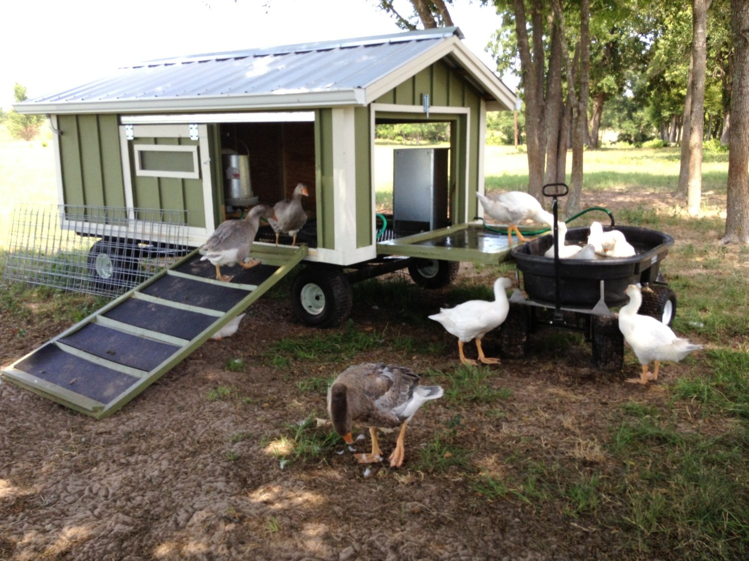large portable goose or duck coop wagon with water