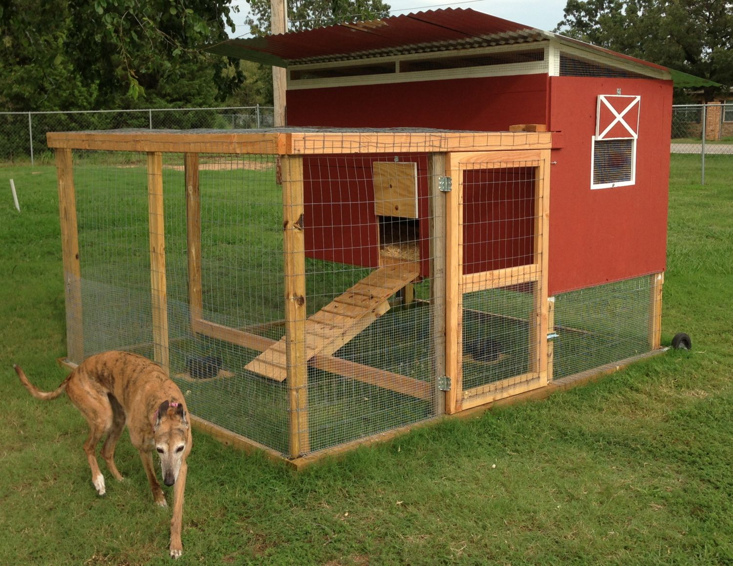 Barn tractor mobile home backyard chickens community for Mobile chicken coops