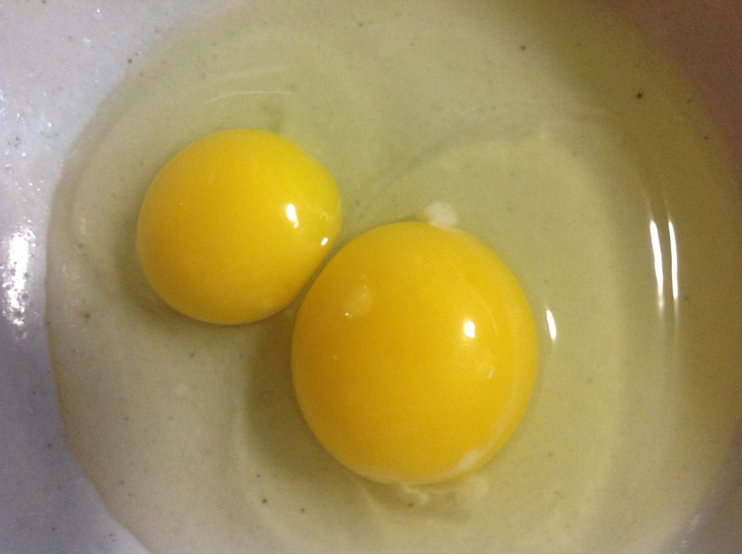 how to know if your eggs are fertile