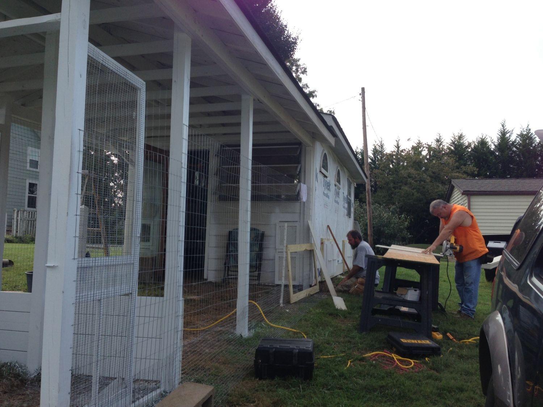 Cacklberry inn backyard chickens community - Gainesville craigslist farm and garden ...