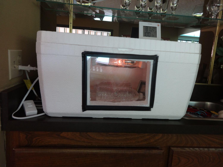 how to build a gecko incubator
