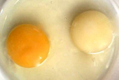 Poultry Egg Quality - White or Platinum Yolks