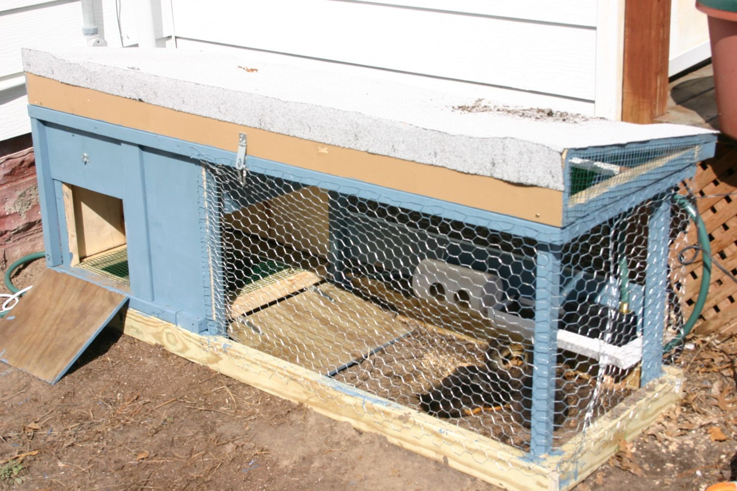 Post Pictures Of Your Duck Pen Coop Page 10