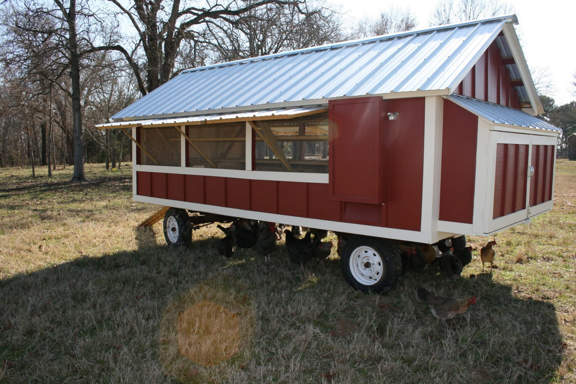 Large Portable Chicken Coop | BackYard Chickens - Learn ...