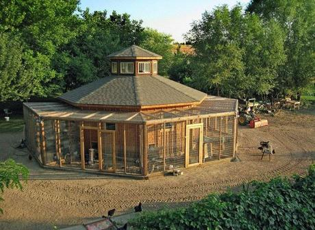 Chicken coop with multiple runs for Building a hen house