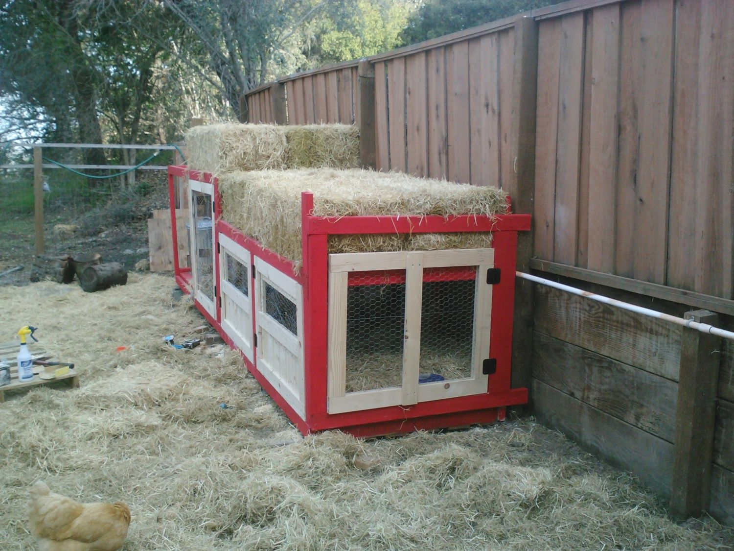 Combination Duck House Manger Backyard Chickens Community