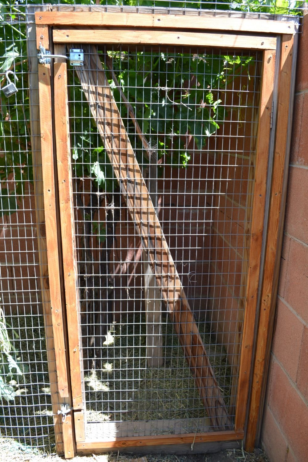 Gallo Del Cielos Chicken Coop Backyard Chickens Wwwbackyardchickenscom Forum Uploads 33115eggpartsdiagramgif I Would Point Out That All The Predator Proofing In World Wont Matter Much At If Door To Or Run Is Left Open