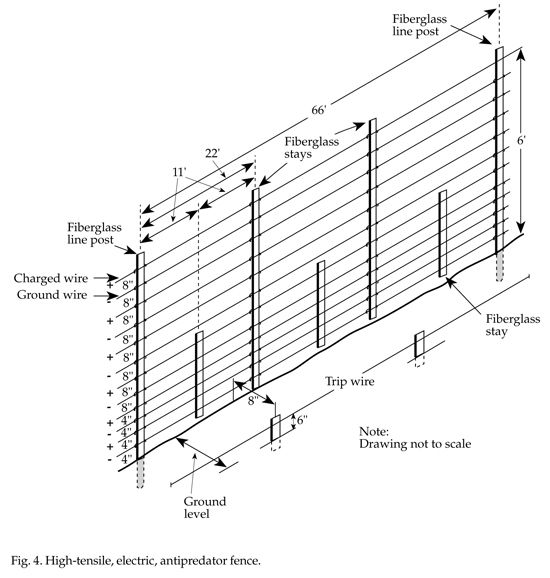 High Tensile Electric Fence