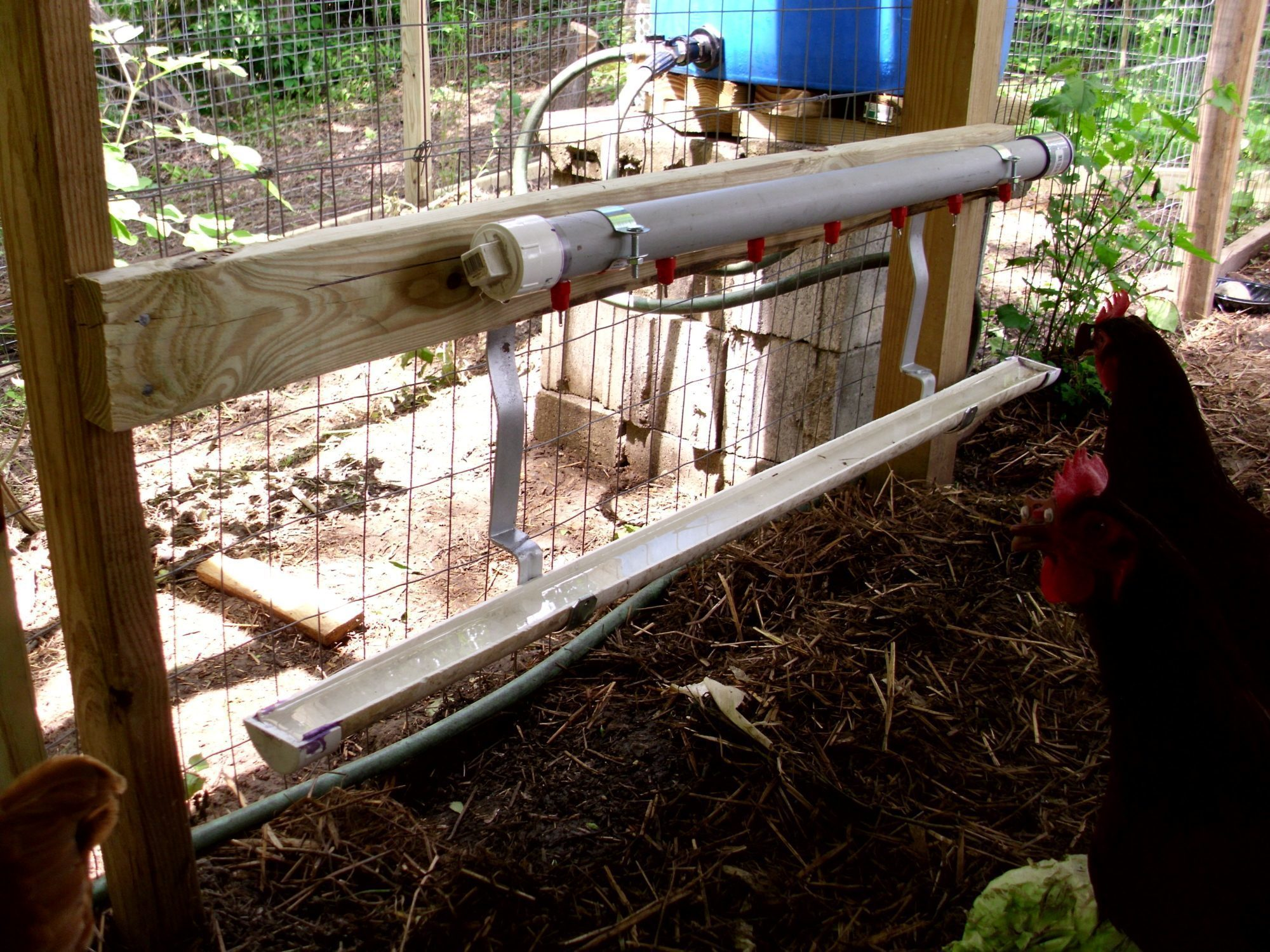 recycled playhouse coop spruced up backyard chickens