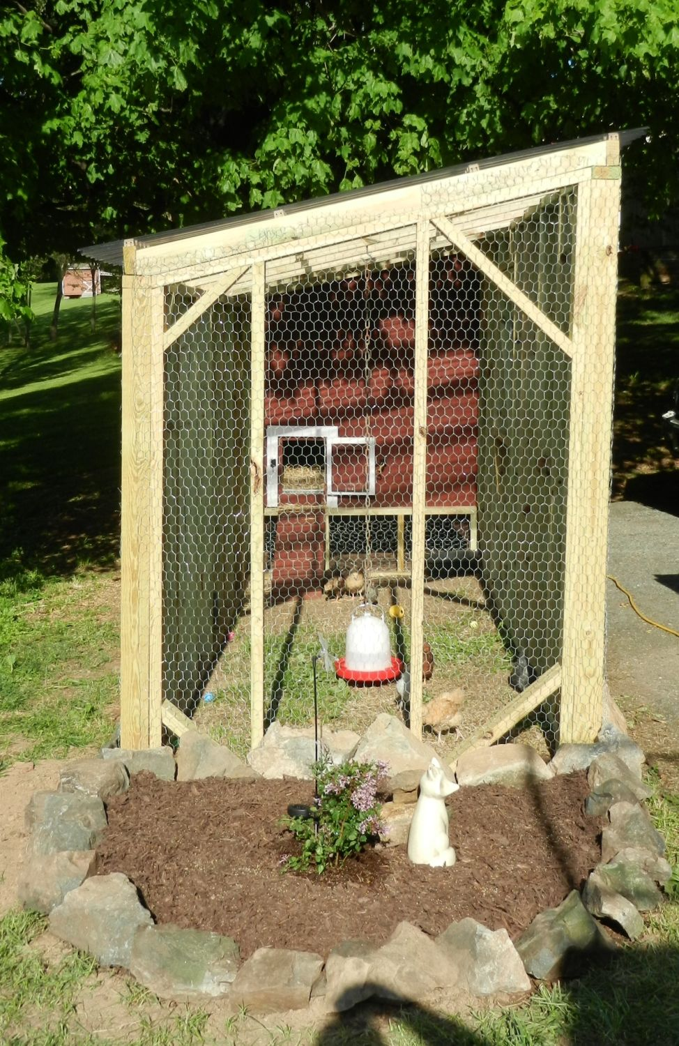 need shade ideas for coop backyard chickens