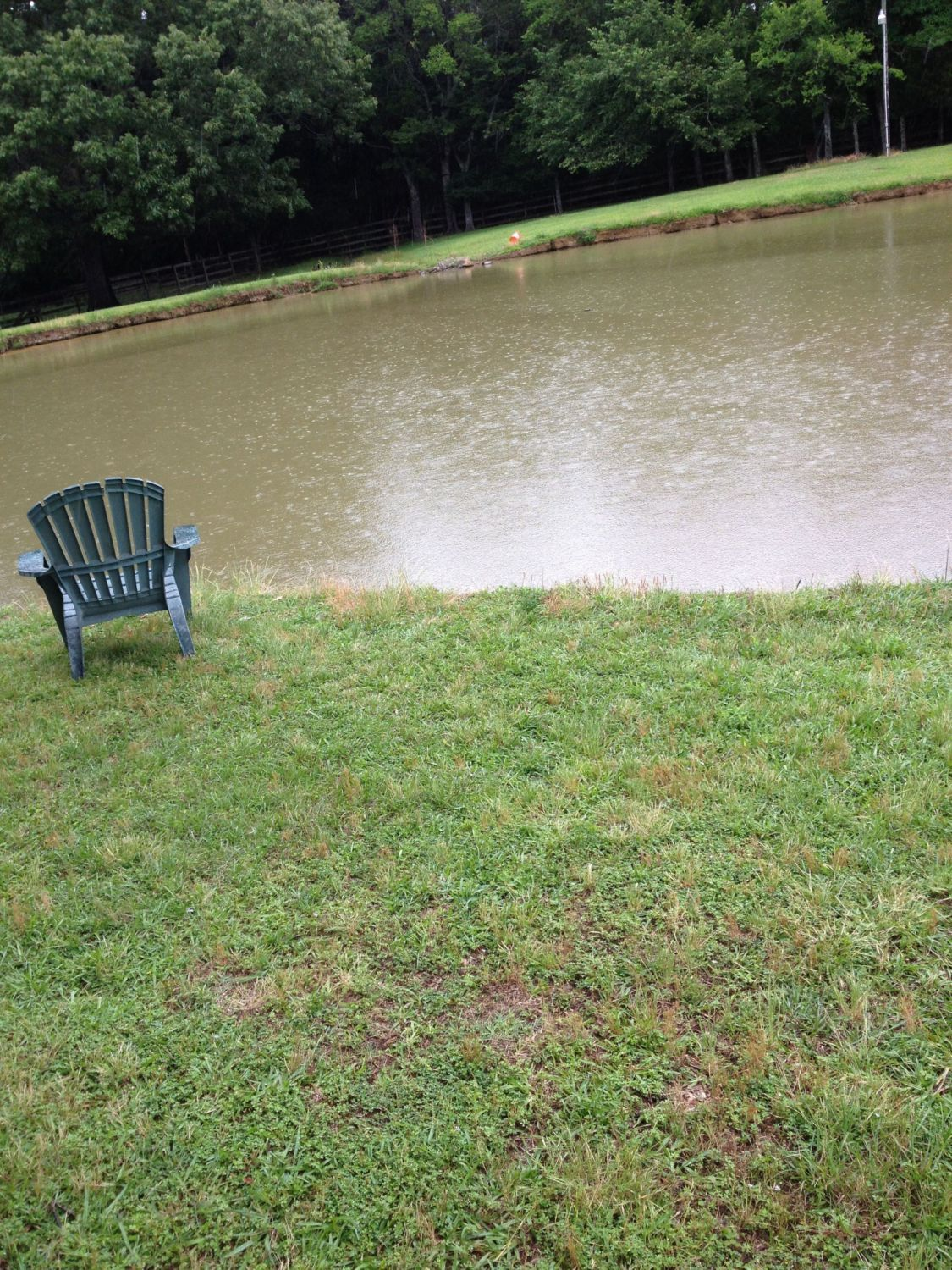 any ideas how to keep duck ponds clean without major costs page