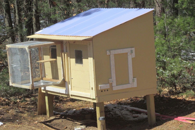 Roller pigeon coop backyard chickens for Pigeon coop ideas