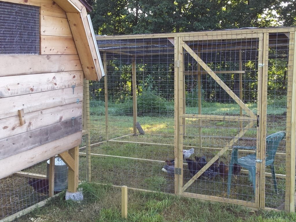 Fully enclosed covered runs cheaply for Enclosed chicken run plans