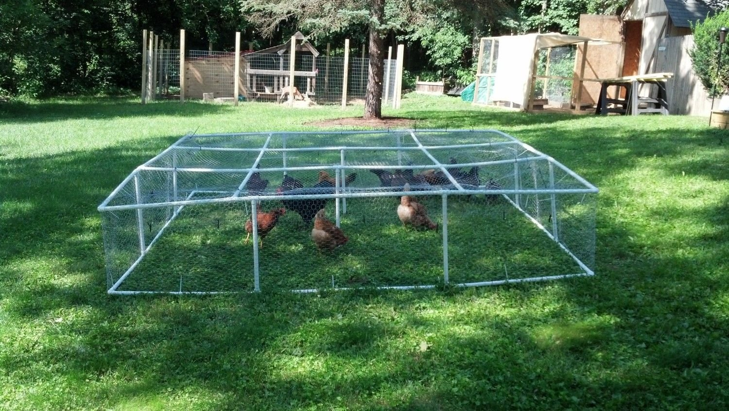 ... NEWS Has Offered Several DIY Chicken Coop Plans, Particularly Designs  For Portable Chicken Coops. If So, So You Should Moot Just About Important  Points ...