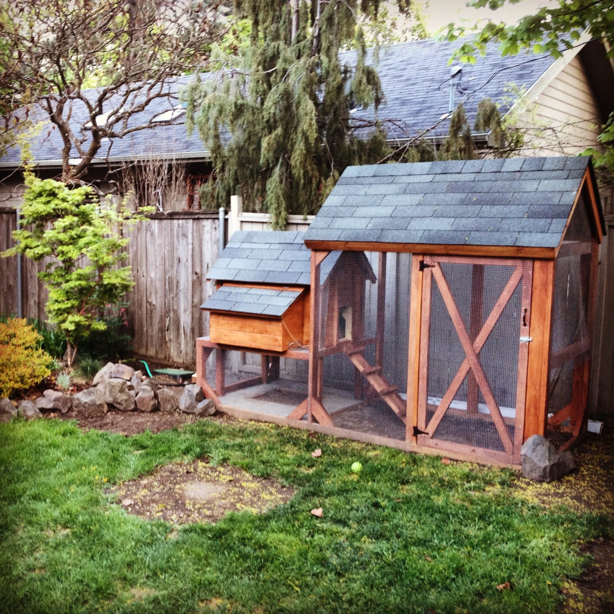 the great pacific northwest coop backyard chickens
