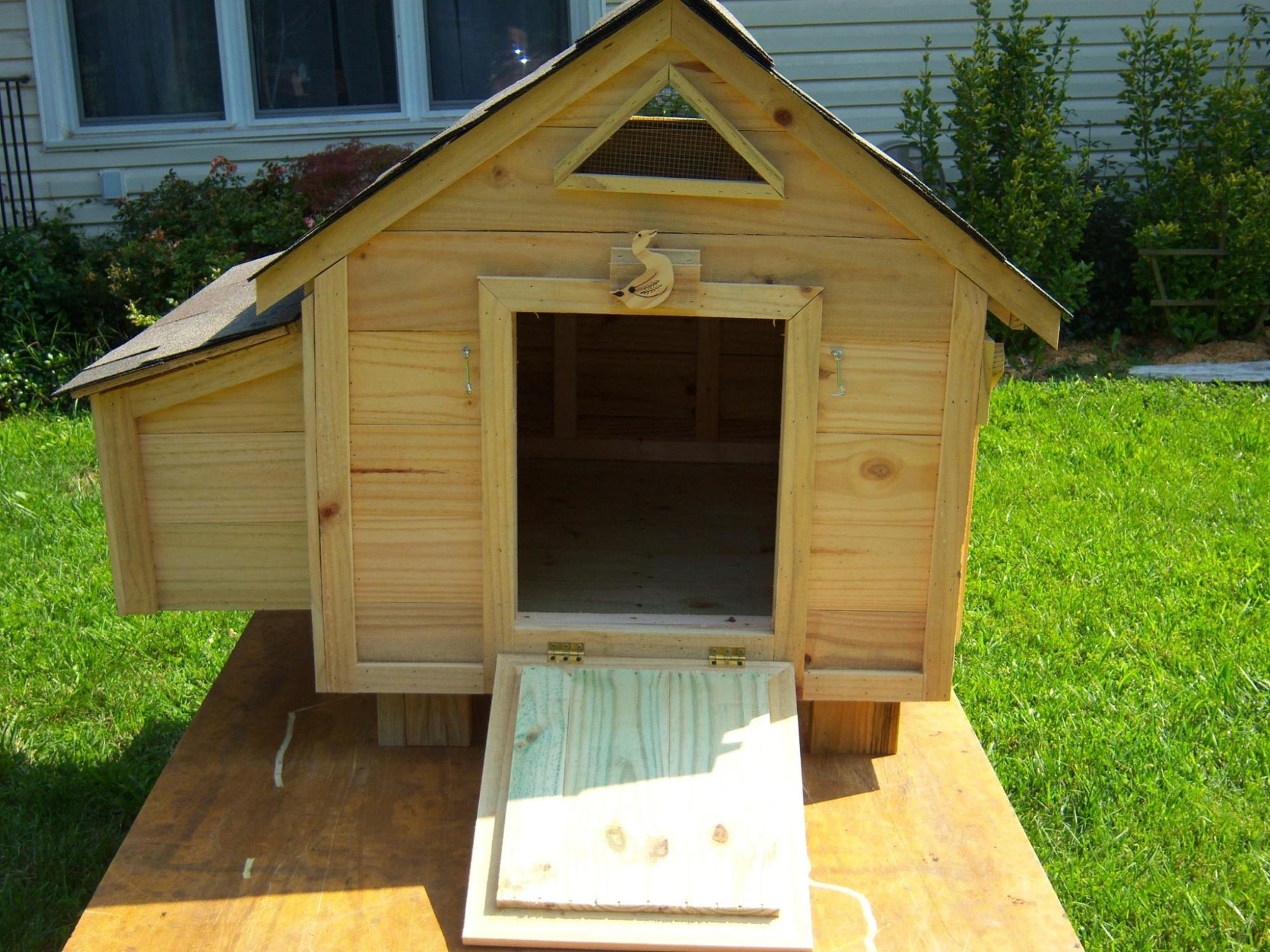 duck house size dimensions backyard chickens