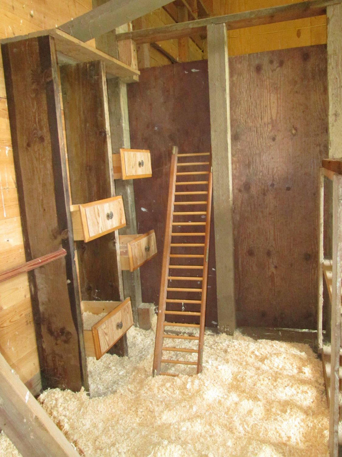 inside photos of chicken coops 2