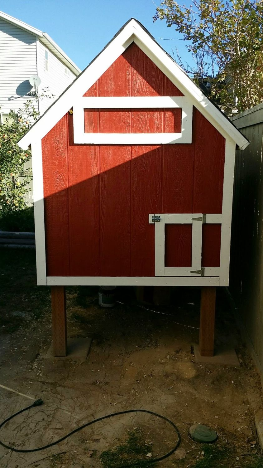 Raised Chicken Coop Backyard Chickens Learn How To Raise Chickens