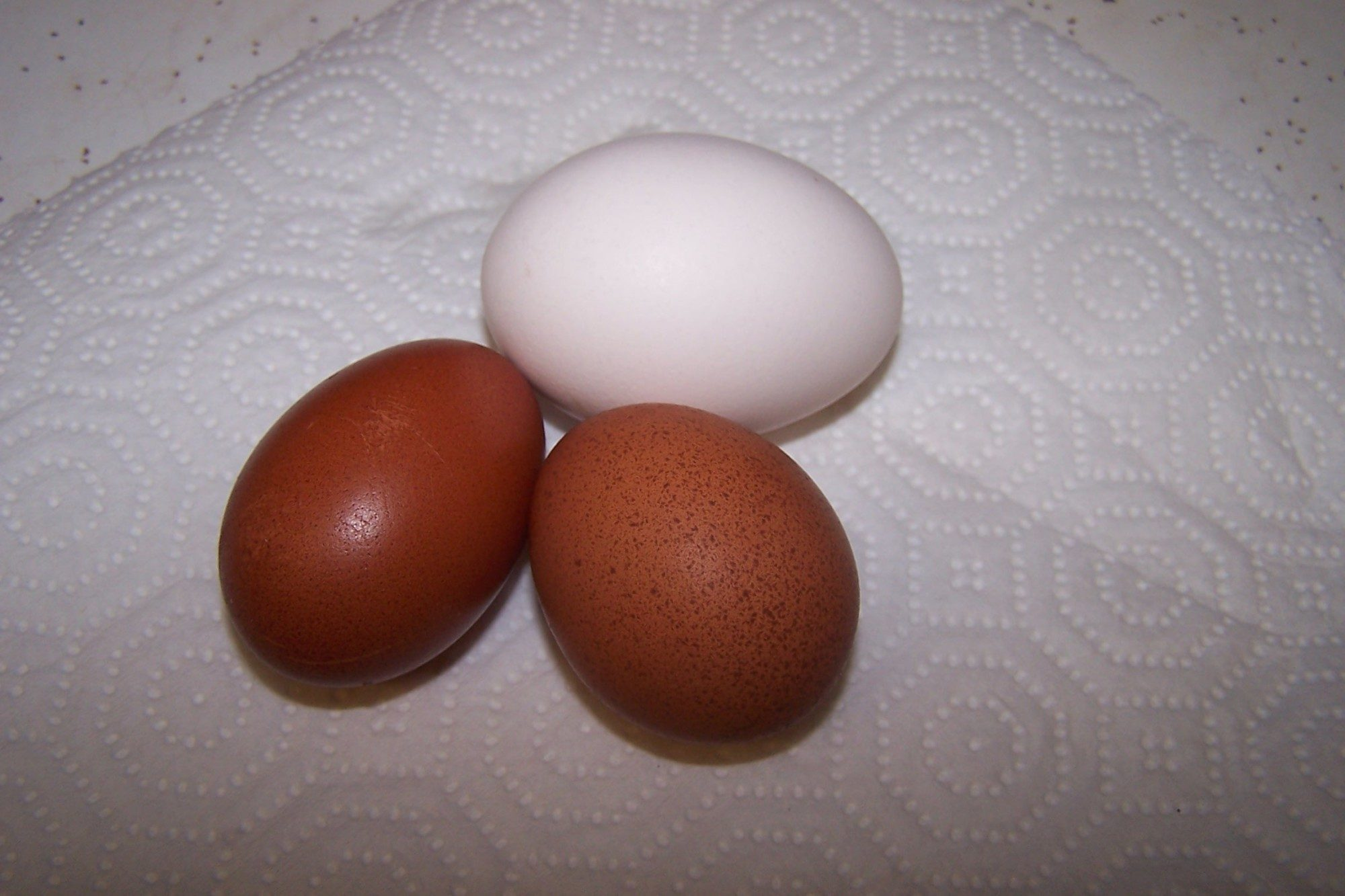 The pullet Marans eggs...about a 5 and 4 respectively on the Marans scale