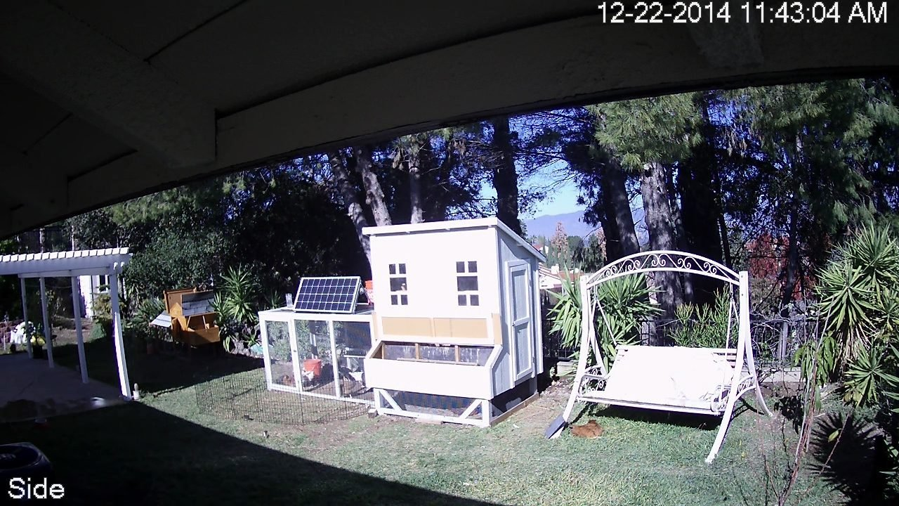 solar powered fully automated chicken coop with wifi backyard