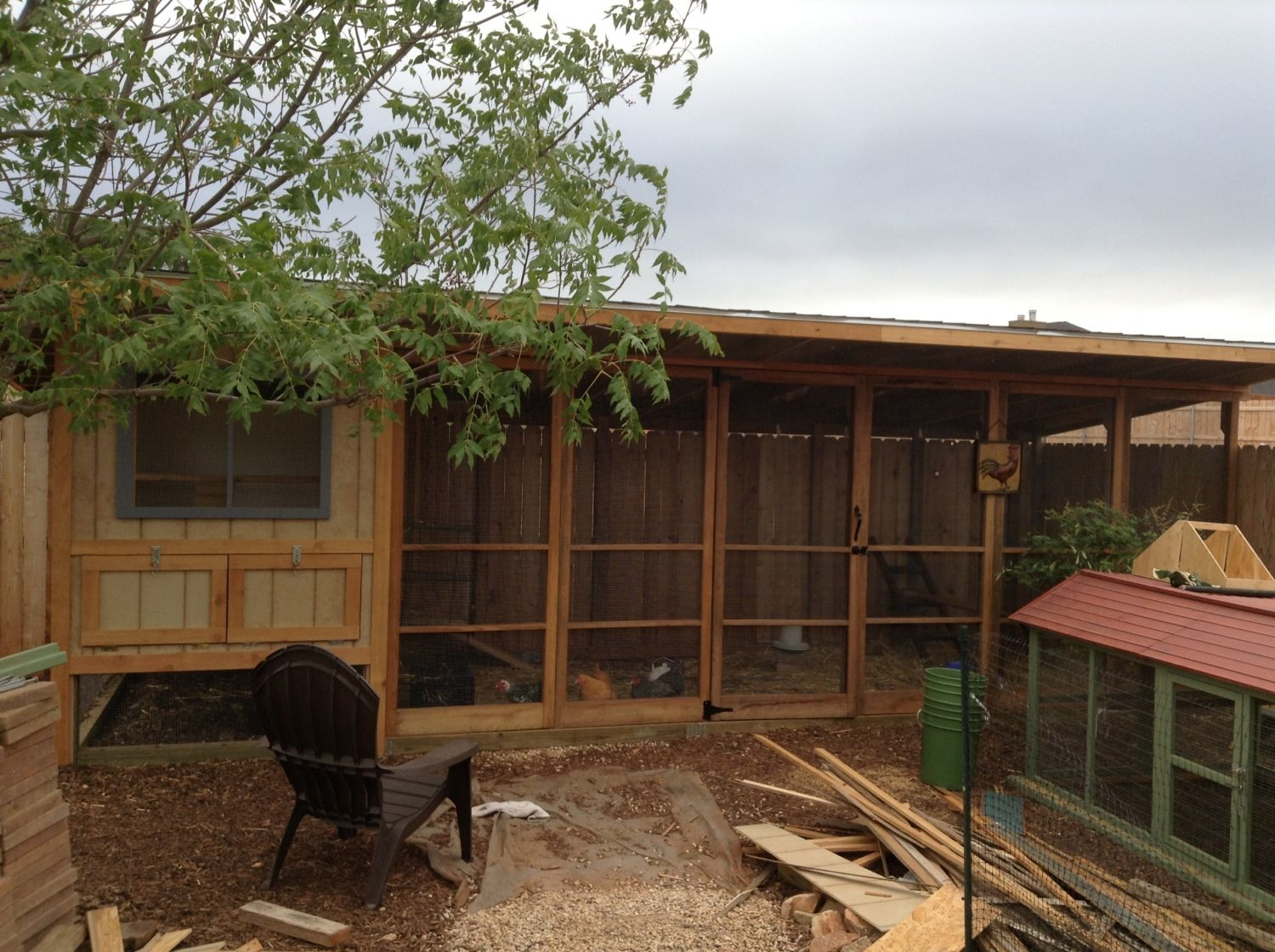 deluxe west texas coop backyard chickens