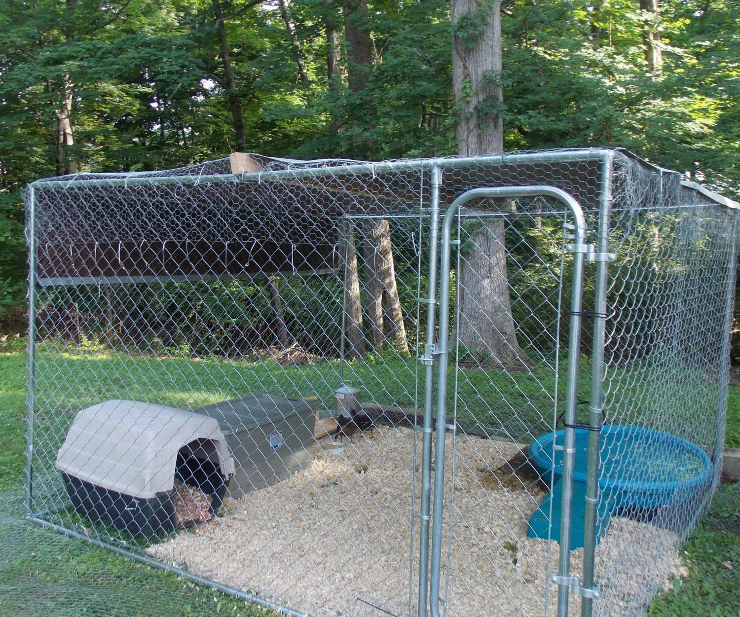 Advise on how to sell or find new home for my ducks for Duck hutch ideas