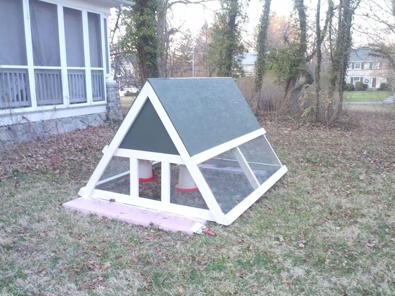 Simple Pleasures A Frame Backyard Chickens Community