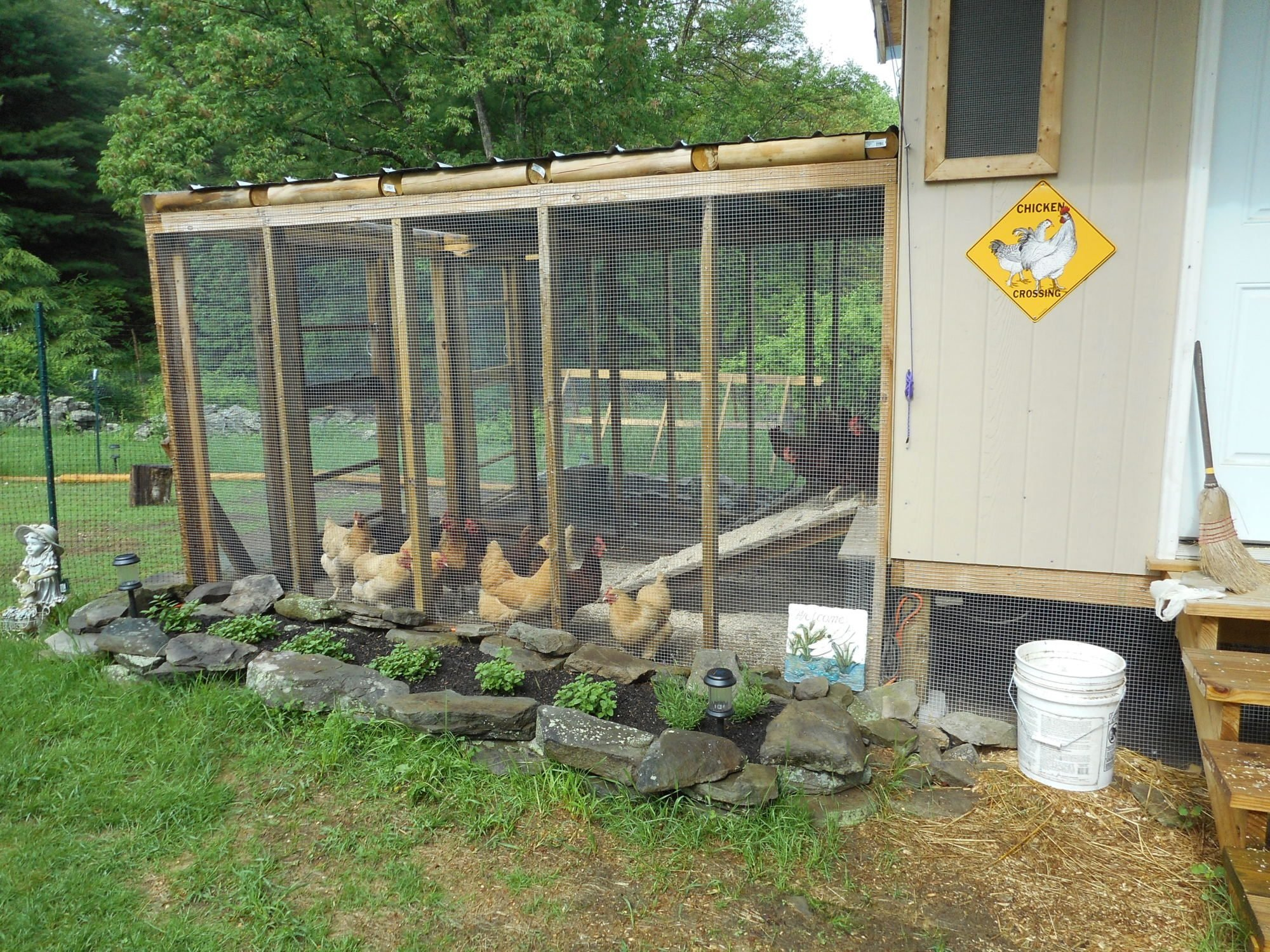 girls fun day out chicken coop backyard chickens