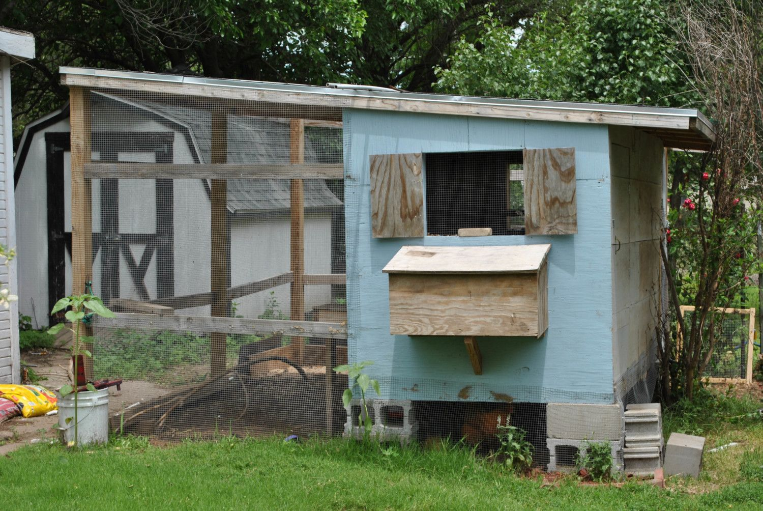 Painting A Scene Onto The Side Of Coop Ideas Backyard Chickens Learn How To Raise Chickens