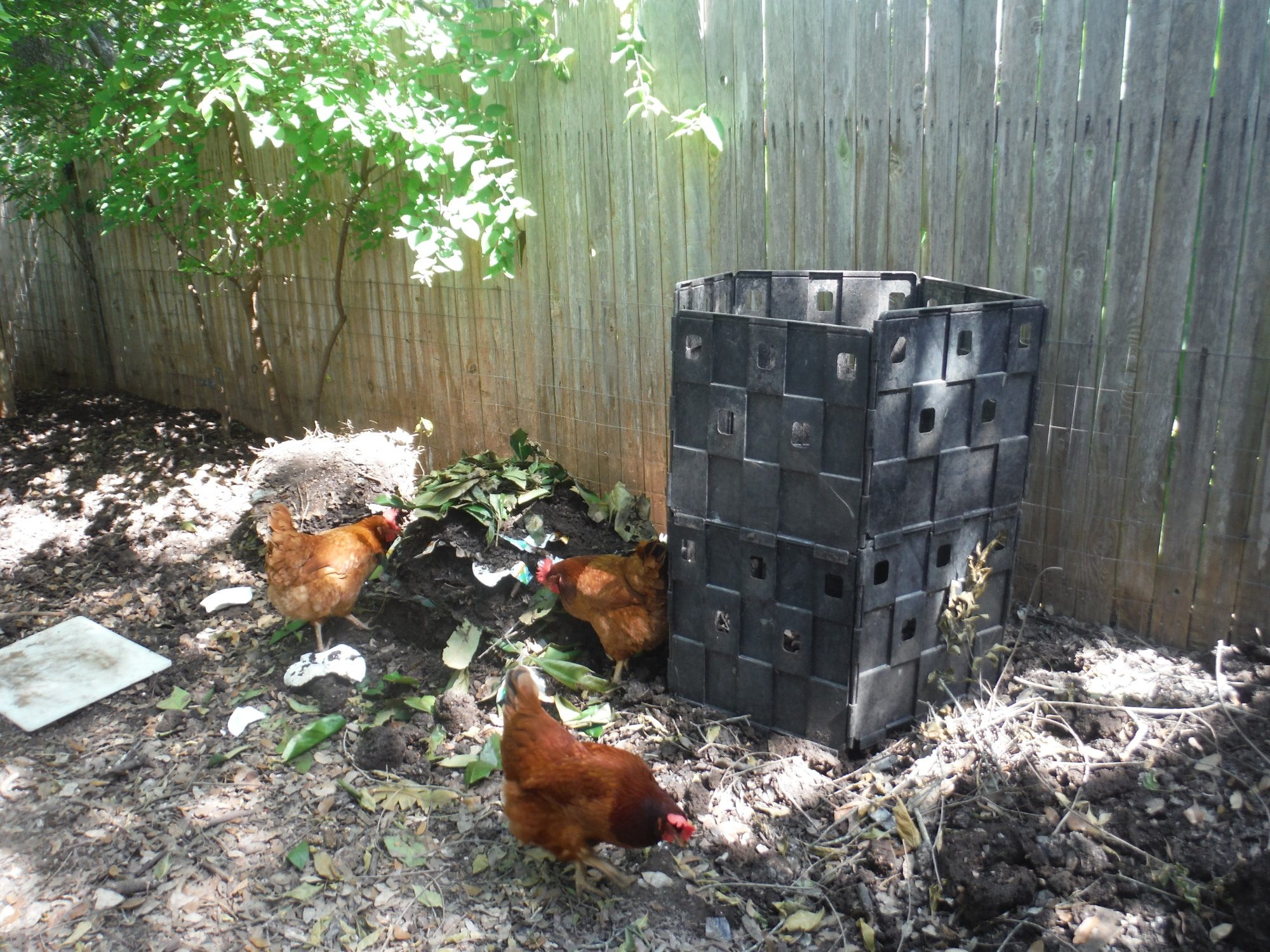 composting u0026 granulated fertilizer question backyard chickens