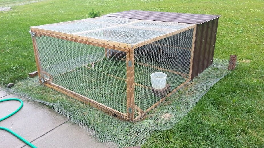 Portable predator proof poultry pen backyard chickens for Moving chicken coop plans