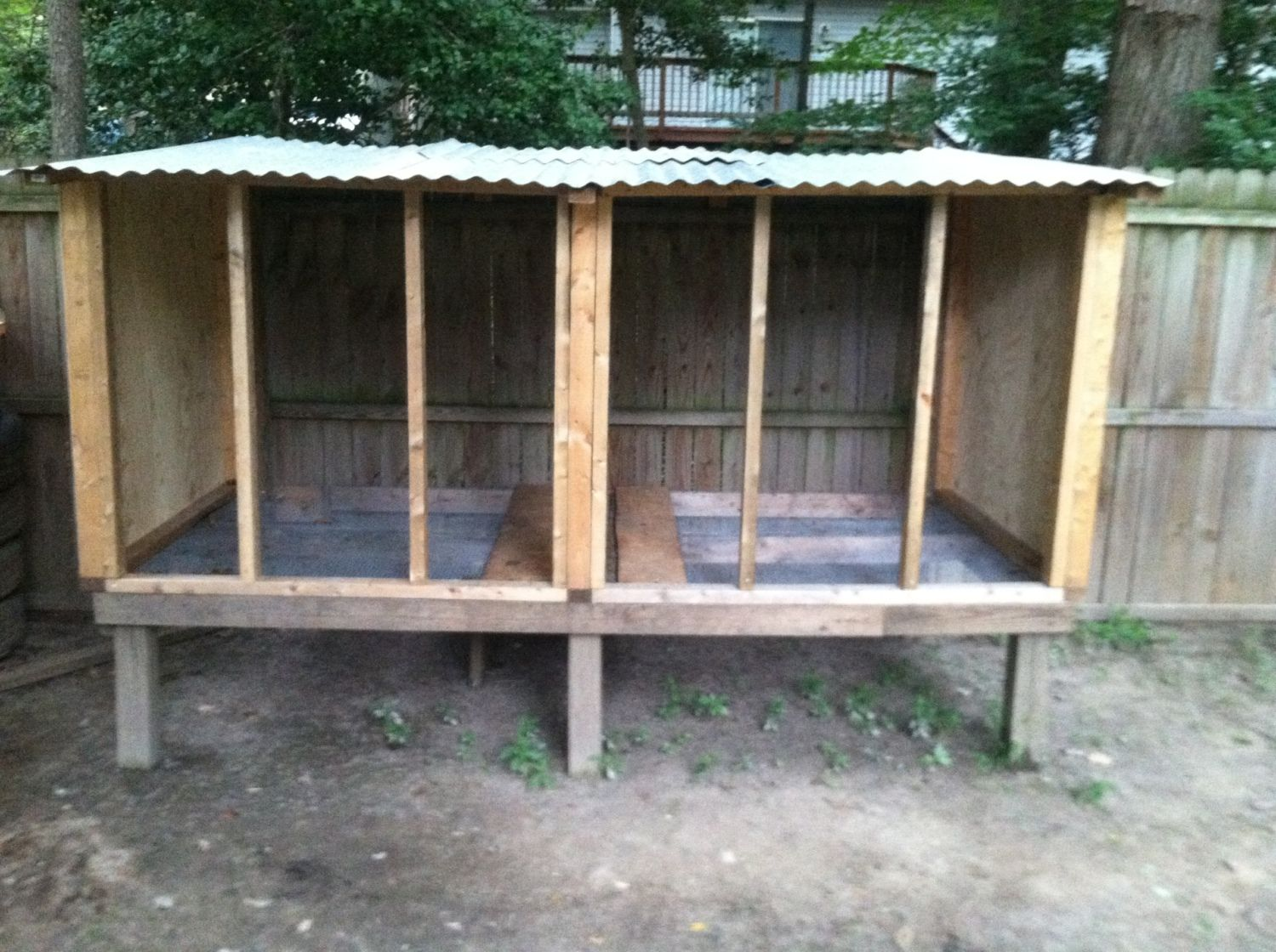 building loft for new pigeons, need info? | BackYard Chickens
