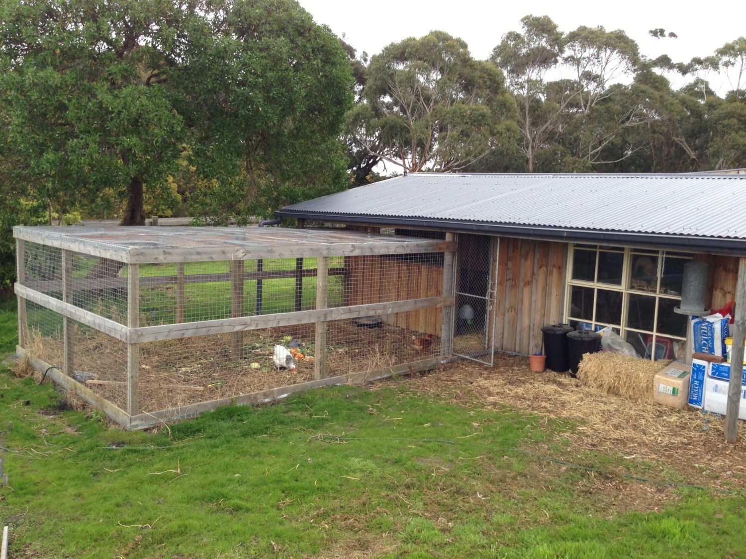 Image gallery large chicken coops for Large chicken house
