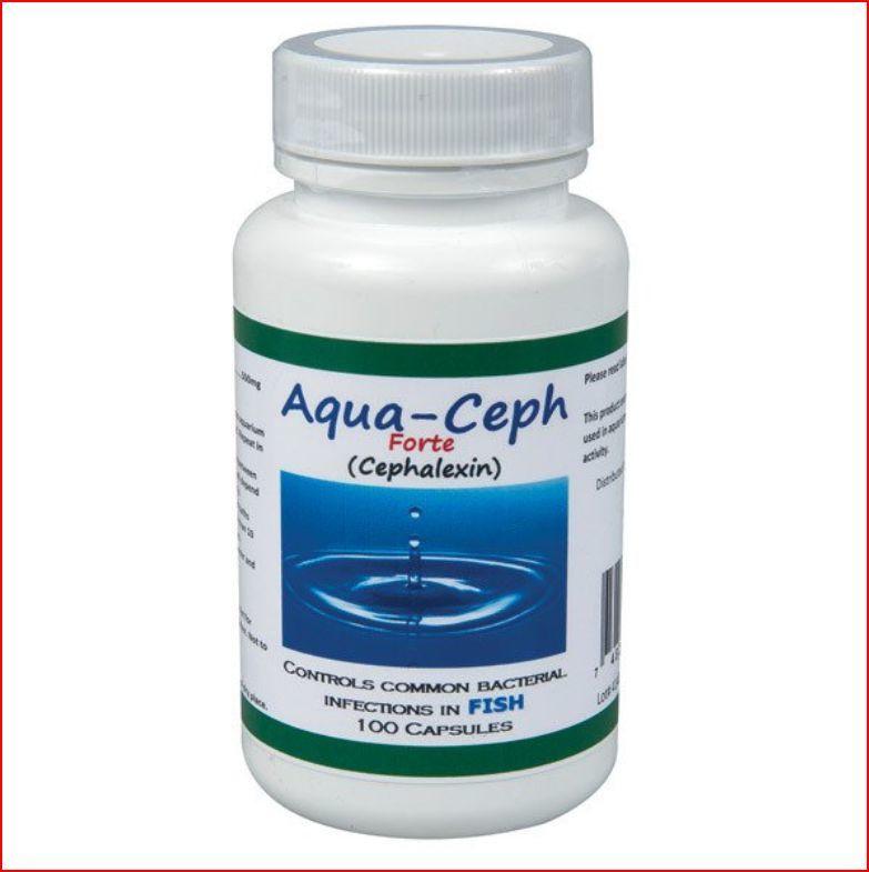 cipro 1000 mg uti