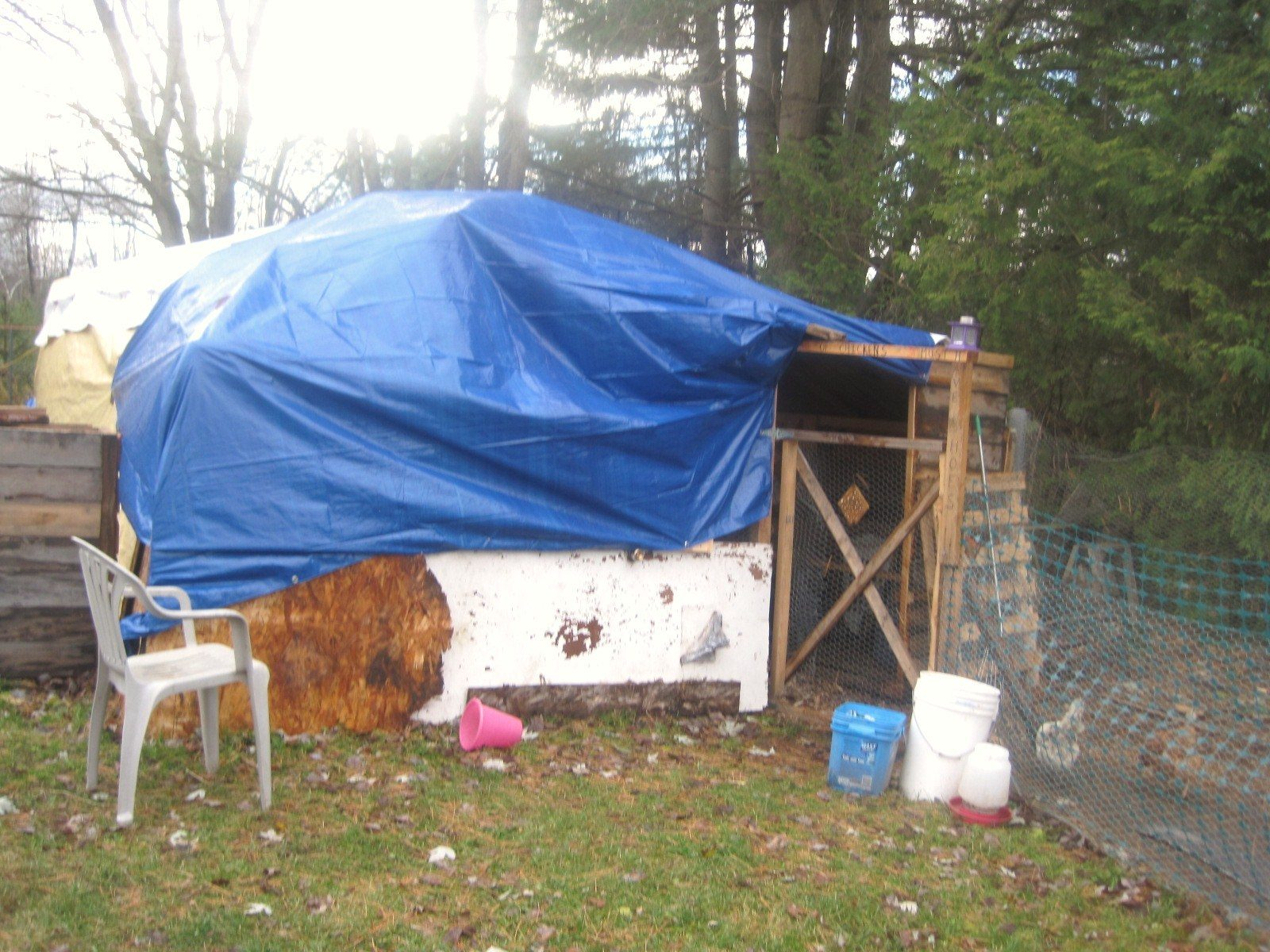 this was my car tent 12 by 20ft. we added it to the coop and covered both ends with tarps