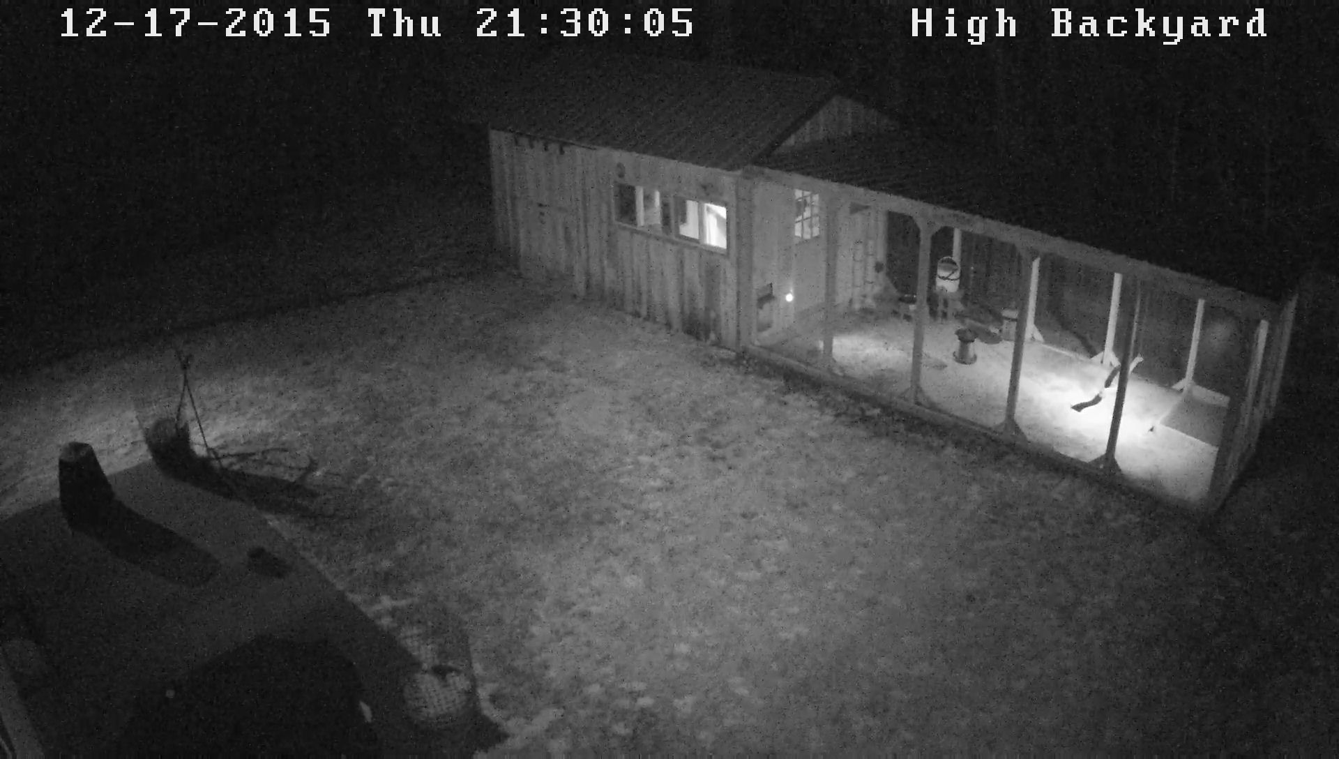 security cameras backyard chickens