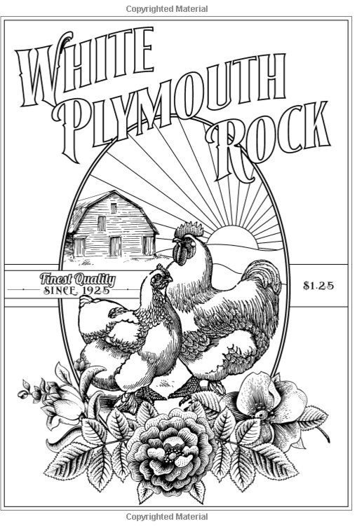 Anyone like to color? I found a cool chicken coloring book ...