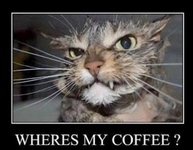 Funny-Coffee-07.jpg
