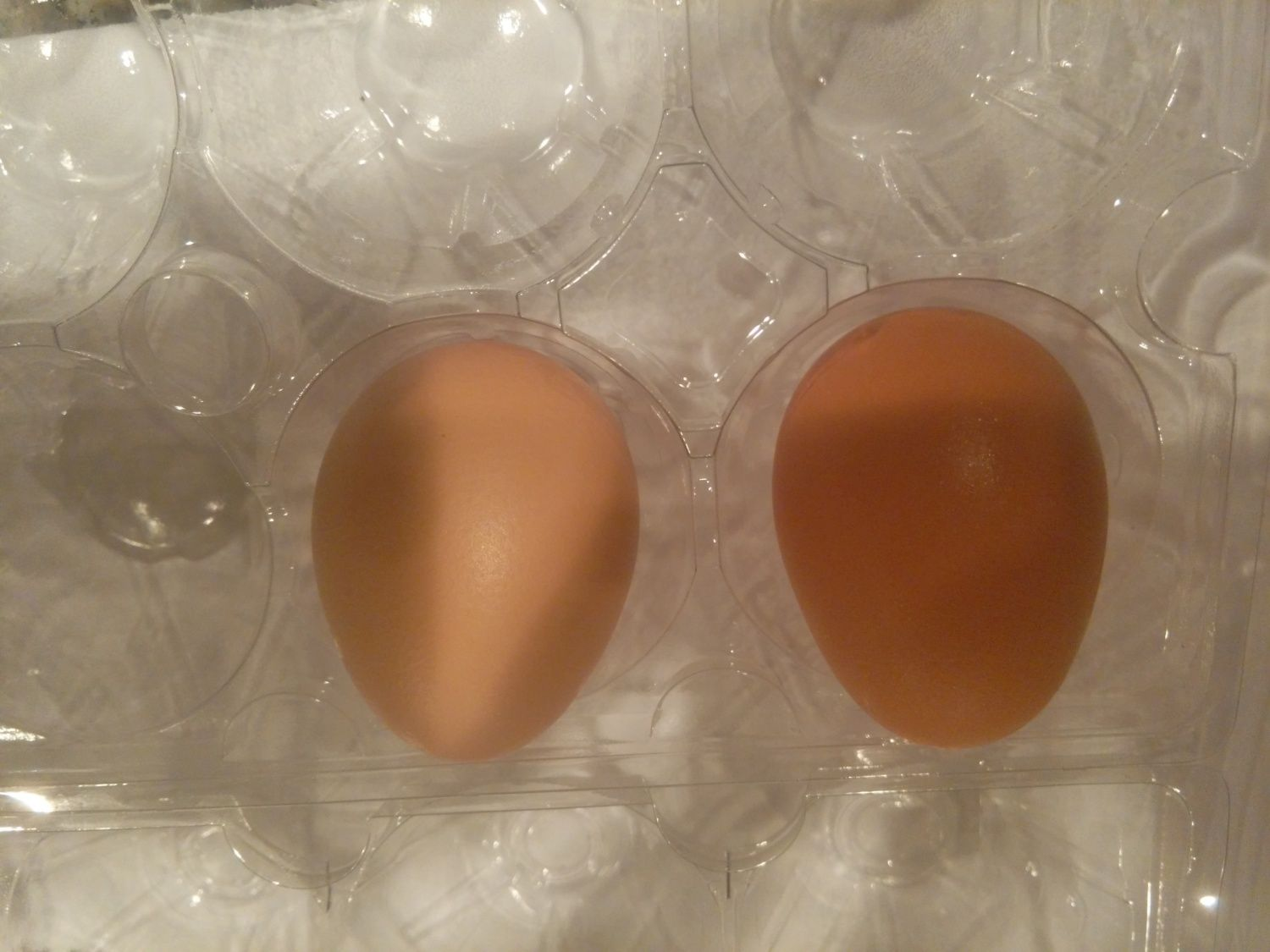 first 2 eggs