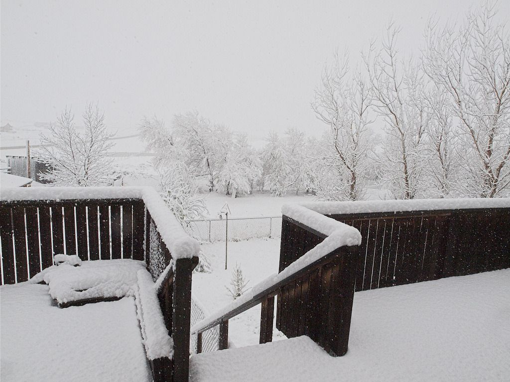Snow on deck 4/26/2016