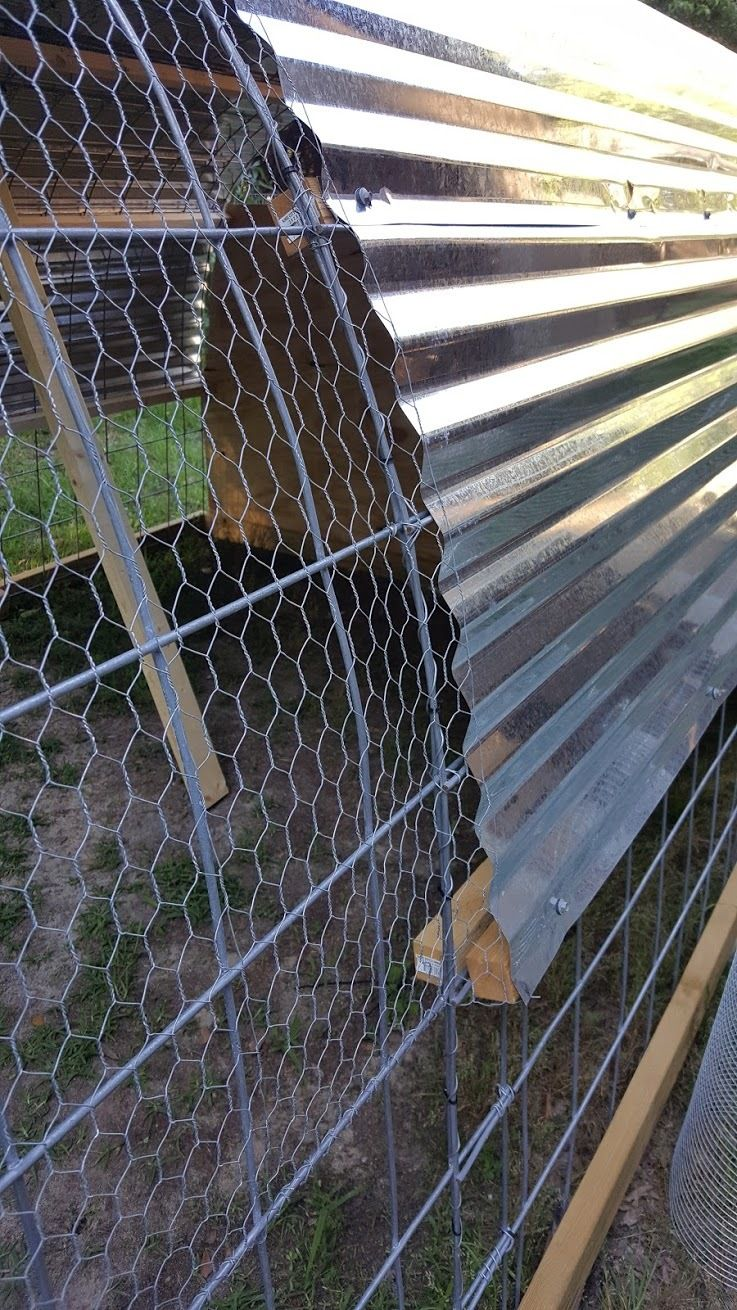 Hoop House/Coop | Page 5 | BackYard Chickens