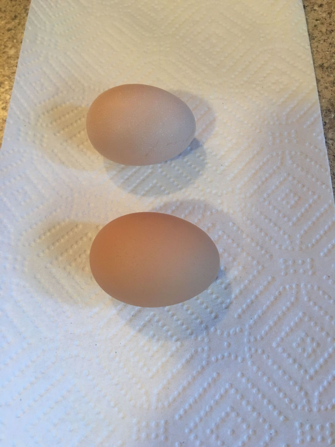 how to get my chickens to lay eggs again