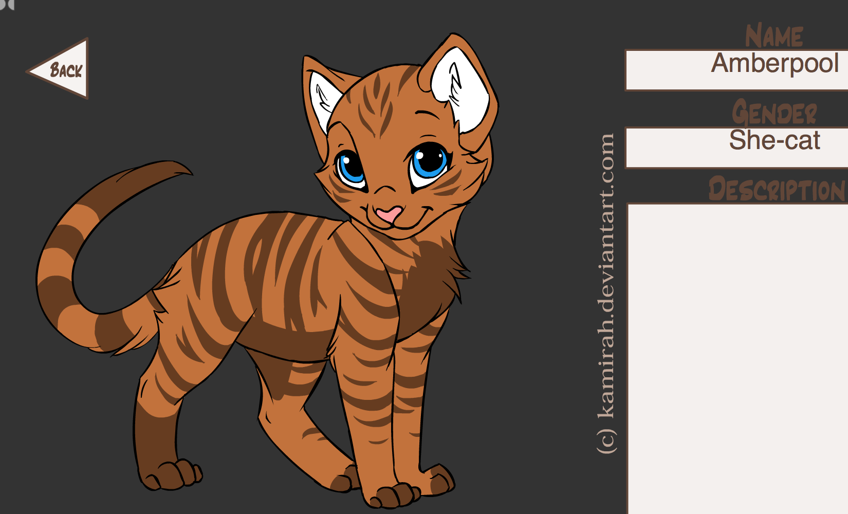 Warrior Names For An Orange Cat | Best Cat Cute Pictures