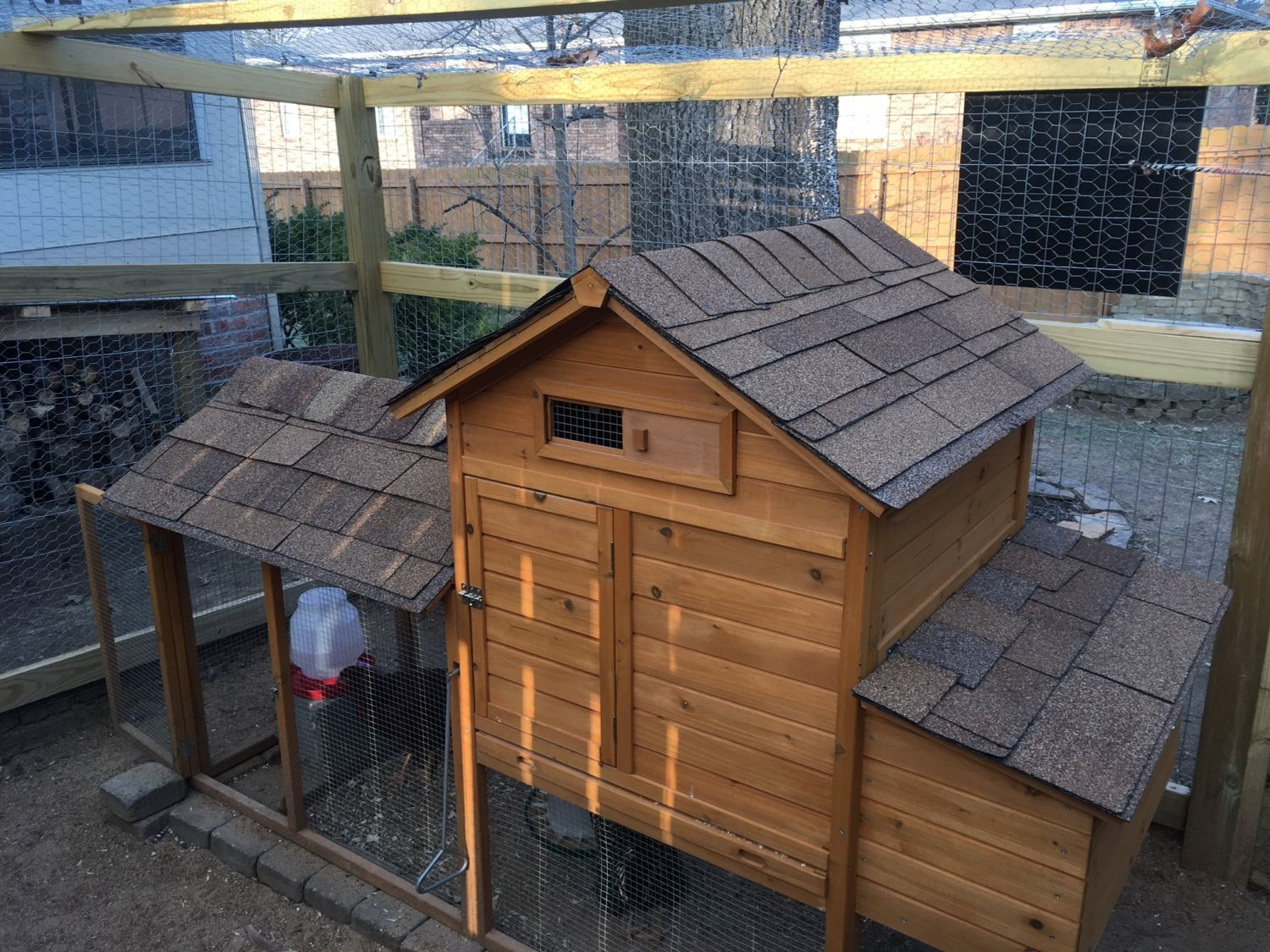 An upgrade was made to our pre-fab coop. I had extra shingles left over from a real roofing job and decided to fancy up the place.
