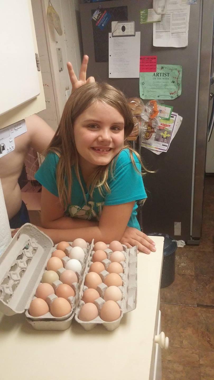 egg crazy