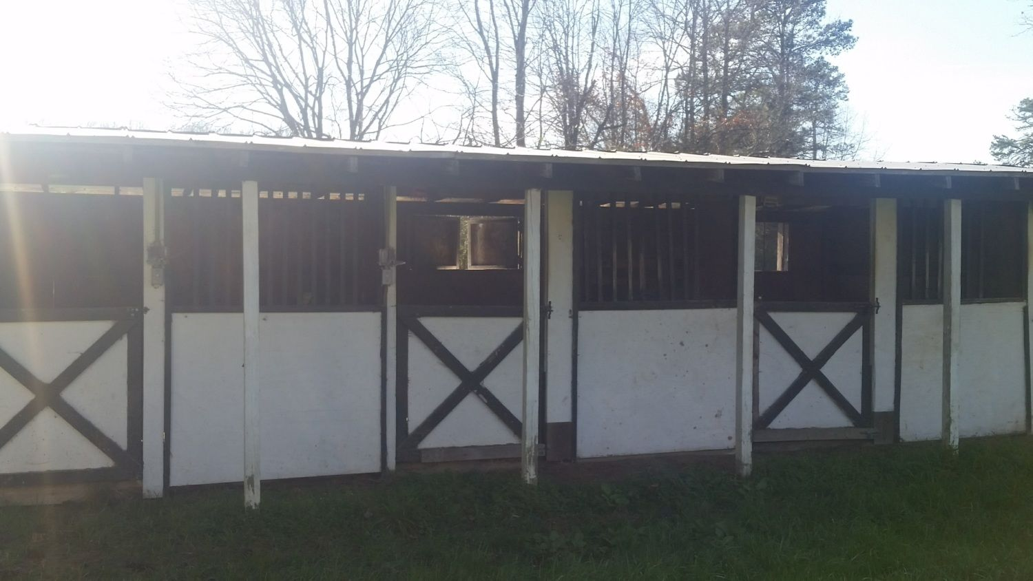 Horse stall to coop, hardware cloth questions, electric poultry ...